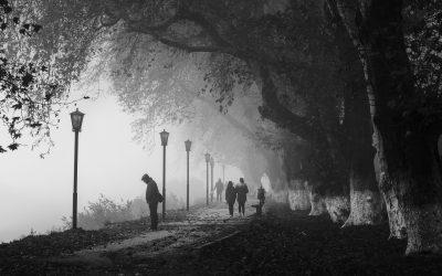 Zaginieni w Polsce – jakie najgłośniejsze zagadki próbują rozwiązać detektywi?